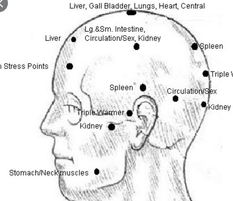 Neurovascular points