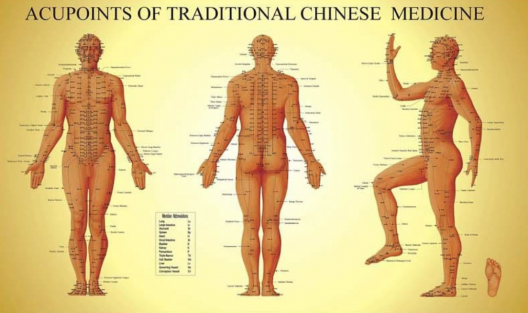 The acupuncture meridian channels
